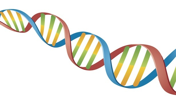 Związek Psów Rasowych - USTALENIE PROFILU DNA PSA