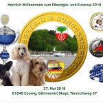 IHV Internationaler HundeVerband e.V
