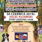VII Krajowa i V Międzynarodowa Wystawa Psów Rasowych (CAC; CACIB) - ZPR/IDA